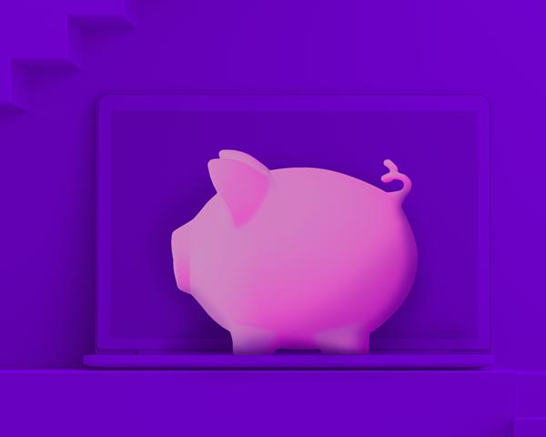 Price pig purple
