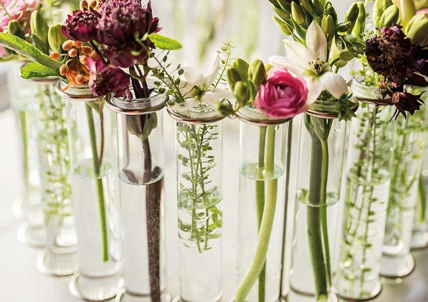 Test tube flower vase from Culinary Concepts