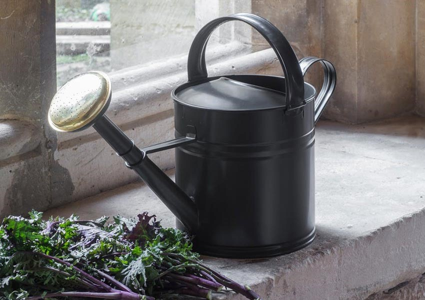 green watering can - the wedding shop